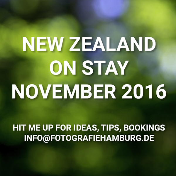 On Stay New Zealand